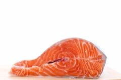 форель красного цвета рыб Стоковое Фото