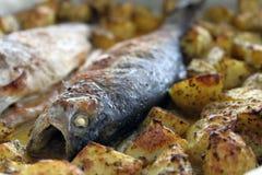 Форель с картошками Стоковое фото RF