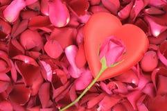 форма больших лепестков сердца розовая Стоковое Изображение RF