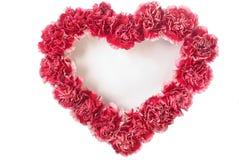 форма влюбленности гвоздики Стоковая Фотография