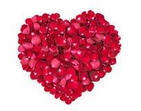 форма лепестков сердца розовая Стоковое Изображение