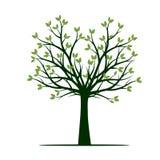 Форма зеленого дерева весны также вектор иллюстрации притяжки corel иллюстрация штока