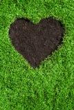 форма лужайки сердца Стоковая Фотография