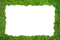 Рамка травы Стоковые Изображения RF