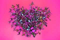 Форма сердца бабочек собирая на розовую предпосылку Стоковые Изображения