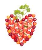 форма сердца зеленых цветов ягод Стоковая Фотография