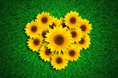 Форма сердца с солнцецветами на луге зеленой травы иллюстрация вектора