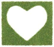 форма сердца травы стоковые изображения