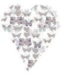 Форма сердца бабочки картины Стоковое Изображение RF
