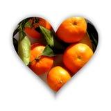 Форма сердца вполне tangerines иллюстрация вектора