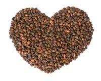 Форма сердца гаек кедра Стоковая Фотография