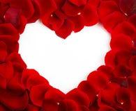 Форма сердца красной розы с космосом экземпляра Стоковое Фото