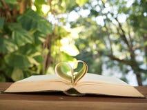 Форма сердца на книге стоковое изображение
