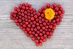 Форма сердца от красной смородины на естественной древесине Стоковые Фото