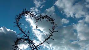 Форма сердца промежутка времени завода и облаков акции видеоматериалы