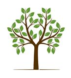 Форма цвета дерева также вектор иллюстрации притяжки corel Стоковая Фотография