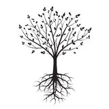 Форма черных деревьев также вектор иллюстрации притяжки corel Стоковые Фотографии RF