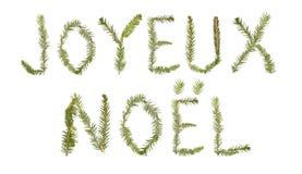 формировать хворостины спруса фразы noel joyeux стоковое фото rf