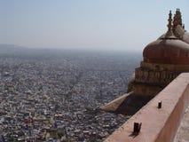 форт jaipur настилает крышу тигр стоковое изображение