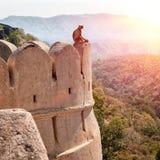 Форт Kumbhalgarh, Раджастхан, Индия Стоковая Фотография RF