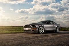 Форд Shelby GT500 Стоковое Фото