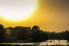 Фотография захода солнца стоковое изображение