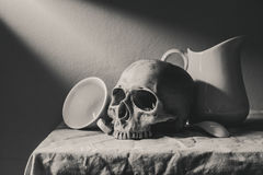 Фотография натюрморта черно-белая с человеческими черепом и cera стоковое изображение rf