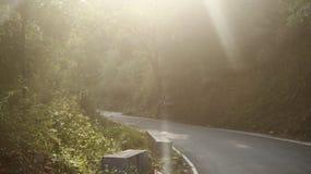 Фотография солнечности стоковые фотографии rf