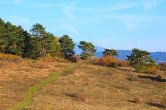 Фотограф ландшафта стоковое изображение