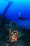 Фотограф водолаза акваланга подводный Стоковое Изображение