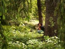 Фотограф в лесе стоковые изображения
