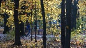Фотограф в парке Стоковые Фото