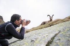 Фотограф живой природы Стоковое фото RF