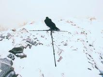 Фотограф кладет в снег и фото принимать замороженной травы с камерой зеркала на шею Стоковая Фотография