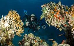 фотограф подводный стоковое изображение rf