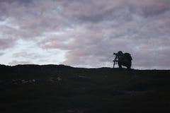 Фотограф Videographer работает в горах стоковые изображения rf