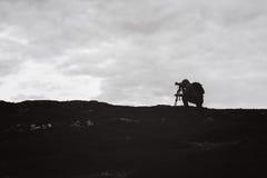 Фотограф Videographer работает в горах стоковое изображение