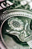 Фотоснимок макроса конец вверх, деталь 1 долларовой банкноты Стоковые Изображения RF