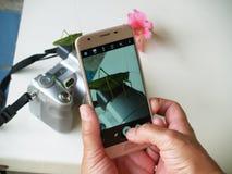 Фотоснимок на телефоне Стоковые Изображения RF