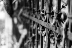 Фотоснимок старого стиля винтажной загородки сделанный из утюга с beautifu Стоковые Изображения RF