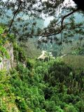 Фото ландшафта лета массива горы леса с сериями зеленых оттенков в горах Кавказа Стоковое Изображение