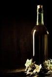фото бутылки старое Стоковые Изображения