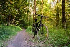 Фото велосипеда стоя на пути в лесе Стоковая Фотография