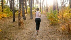 Фото вид сзади молодой sporty женщины бежать в парке к солнцу Стоковые Фото