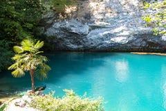 Фото голубых озера и пальмы стоковые фото