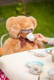 Фото девушки давая чай к плюшевому медвежонку в солнечных очках Стоковые Фото
