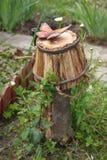 Фото деревянного ведра с бабочкой на ей Стоковое Изображение RF
