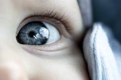 Фото детали глаза младенца стоковая фотография rf