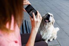 Фото женщины на стенде фотографируя собаку Стоковое Изображение RF