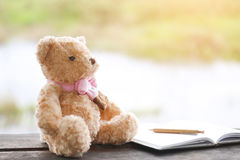 Фото запаса: Плюшевый медвежонок самостоятельно на backg bokeh природы деревянного стола Стоковое Изображение RF